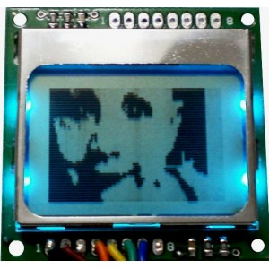 Monochrome Graphic SPI Lcd Display Module with Pcb
